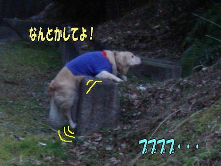116_2